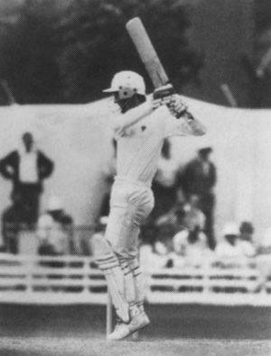 Peter Roebuck playing for Somerset