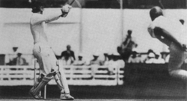 Jimmy Cook batting
